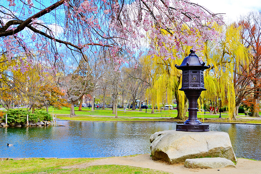 Boston Common Garden